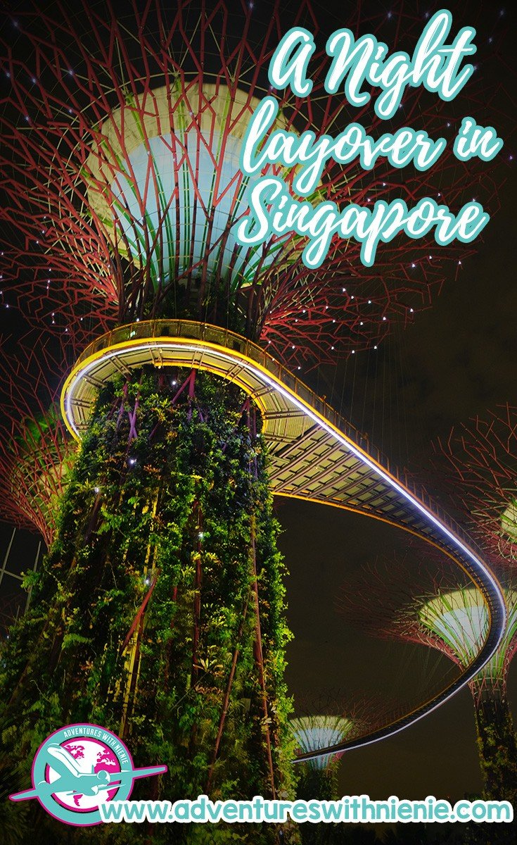 Limited Night Layover in Singapore